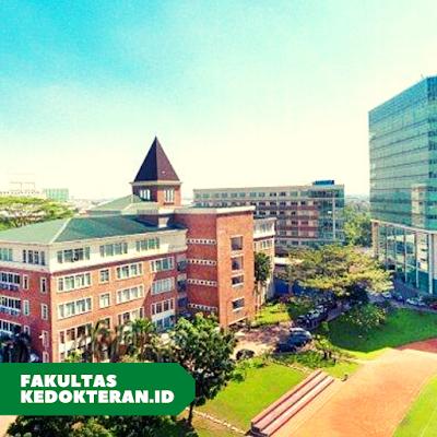 fk Universitas Pelita Harapan