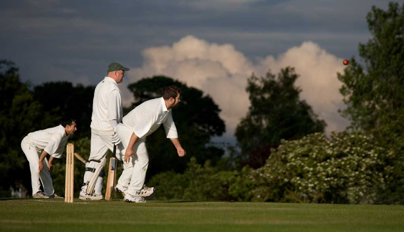 Cricket-2011-Sutton11