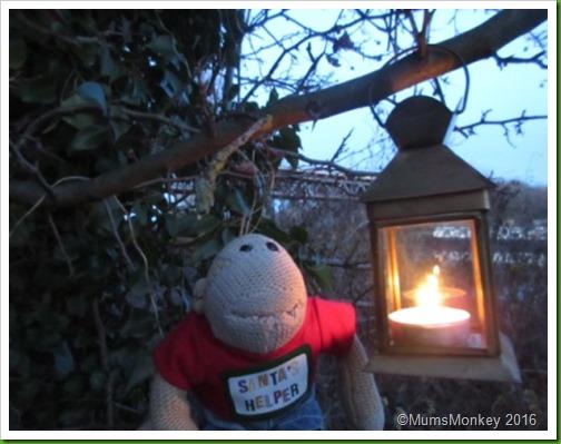 Nigel Christmas Eve