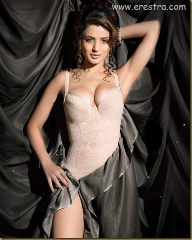 Amisha pics (37)