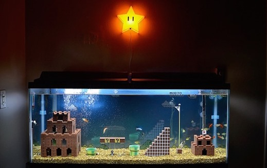 SMB Fish Tank