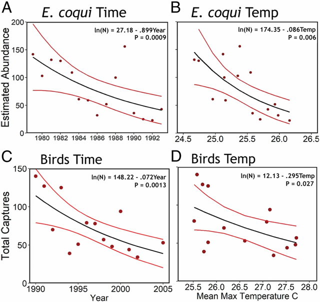 Population trends for E. coqui and birds near the El Verde Field station in Puerto Rico. (A) Quasi-Poisson regression of estimated total number of E. coqui individuals against time from censuses conducted by Stewart (28) in the Activity Transect. (B) Quasi-Poisson regression of the estimated number of E. coqui individuals against MnMaxT during the time periods when Stewart's censuses were conducted. (C) Quasi-Poisson regression for the total number of birds captured during equal length, 4-d sessions of mist netting (31) near the El Verde Field Station against the period when the mist netting was conducted. (D) Quasi-Poisson regression of the total number of birds captured during Waide's (31) 4-d sessions vs. MnMaxT during the year of mist netting. The 95 percent confidence intervals are shown around the best-fit regression lines. Graphic: Lister and Garcia, 2018 / PNAS