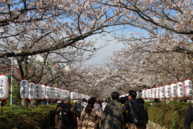 2014 Japan - Dag 7 - marjolein-IMG_0989-0622.JPG
