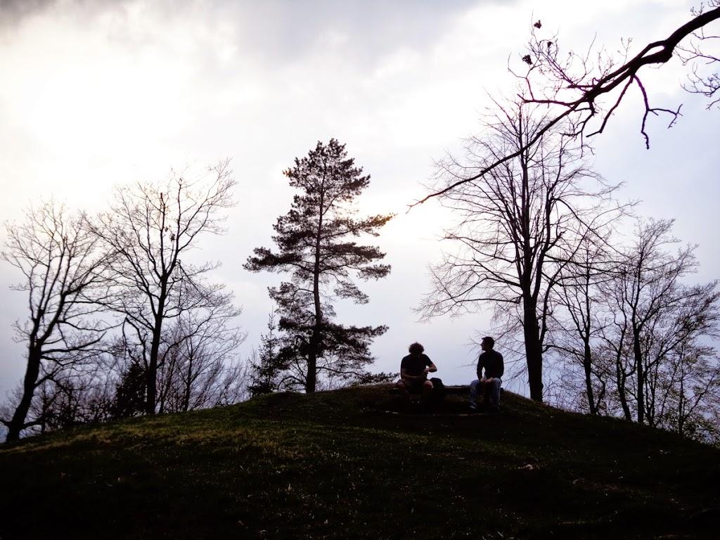 Osovnik - Vika-00736.jpg