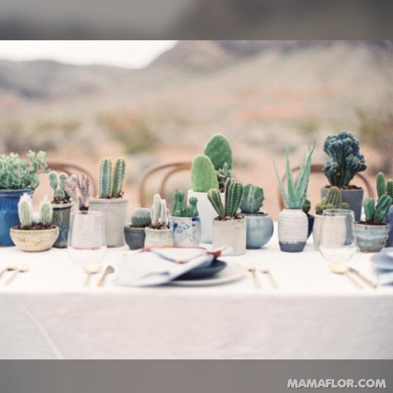 Centros-de-mesa-para-Boda-con-cactus-y-suculentas---9