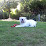 Twala Coggins (Twala Intimates)'s profile photo