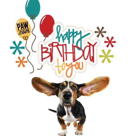 Happy Birthday Puppy Dog