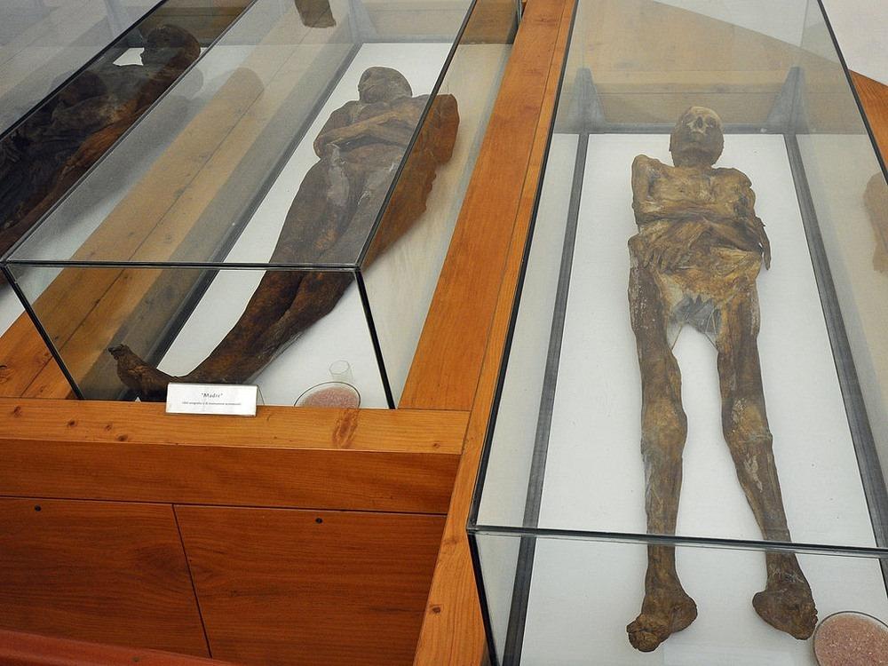 venzone-mummies-5