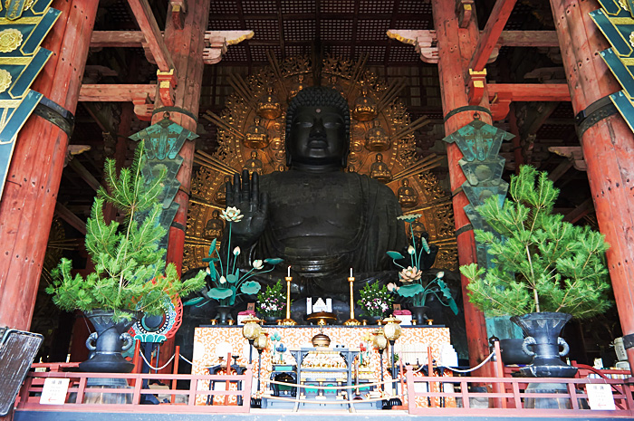 Nara11.jpg