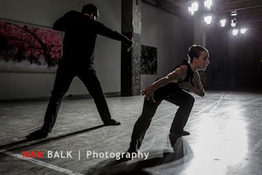 Han Balk Lainarc-8752.jpg