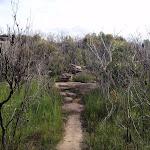 path across rock flats (53636)