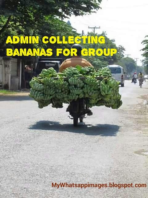 Latest Whatsapp Group Admin Jokes