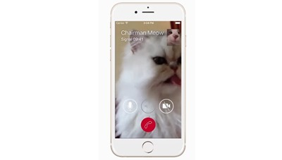 Video-calls-Signal