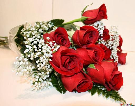 Bó hoa hồng đỏ thắm dành cho người mình yêu