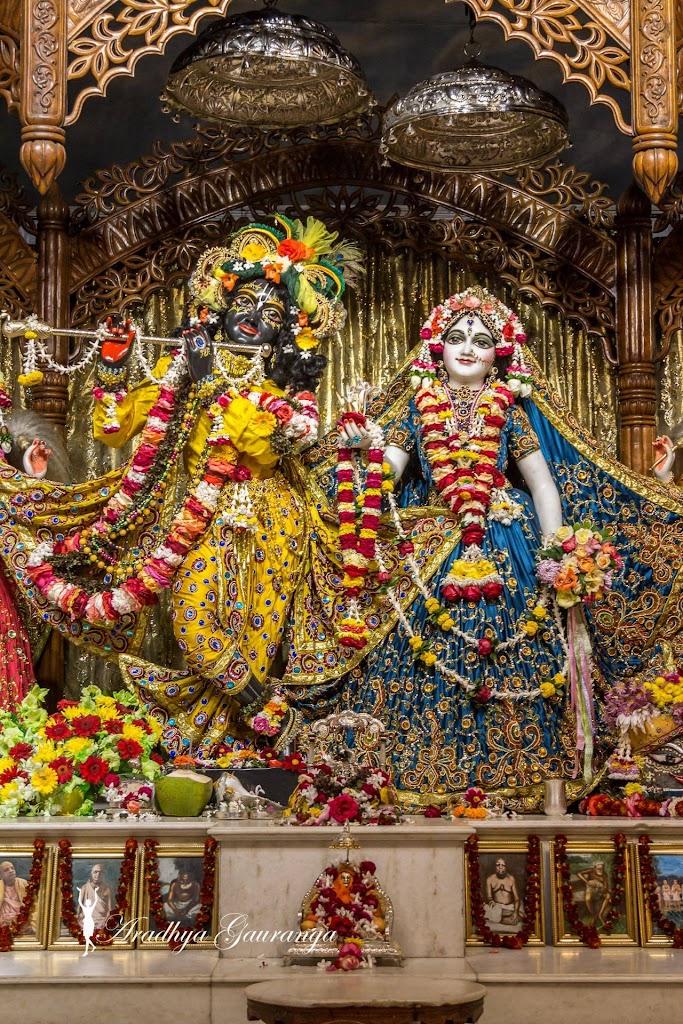 ISKCON Mayapur Deity Darshan 18 Jan 2017 (33)