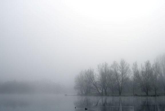 cold_november_day