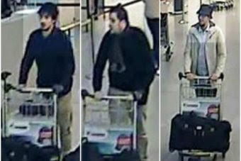 Brussels terrorist arrested