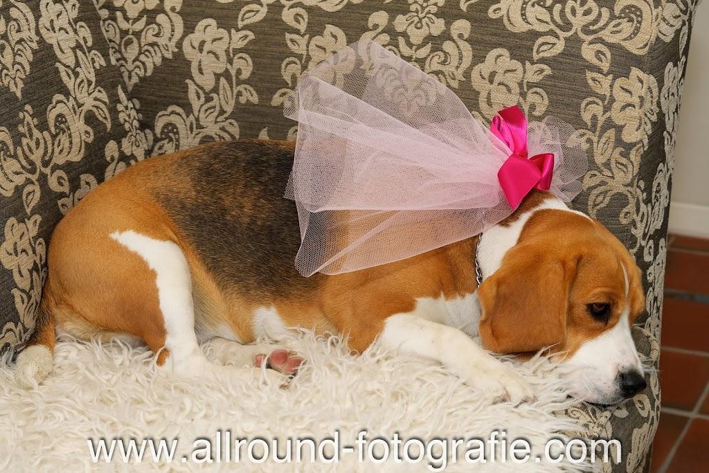 Bruidsreportage (Trouwfotograaf) - Detailfoto - 026