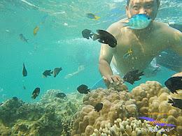 pulau harapan timur jauh 29-30 nov 2014 caklung 32