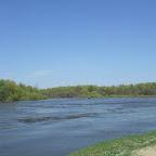 Река Хопер 057.jpg