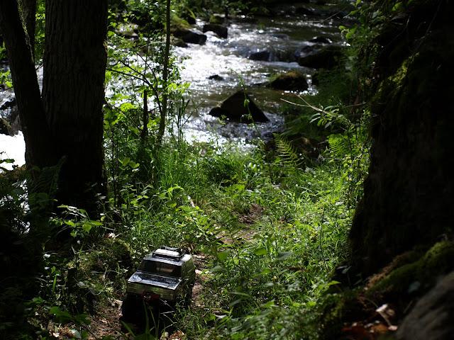 [15 mai] Journée crawler au bois - Page 2 P5156241