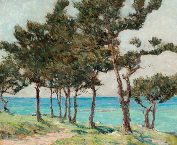 Clark Voorhees - Cedar Trees at Whale Bay