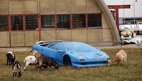 Abandoned Lamborghini Diablo