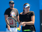 Ajla Tomljanovic - 2016 Australian Open -DSC_9909-2.jpg
