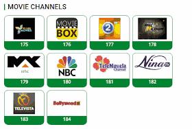 TSTV, TSTV channels