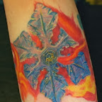 fire and ice - Forearm Tattoos Designs