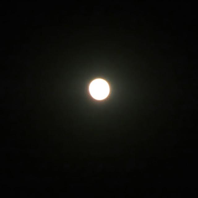 Full Moon, Mahansar, Shekhawati