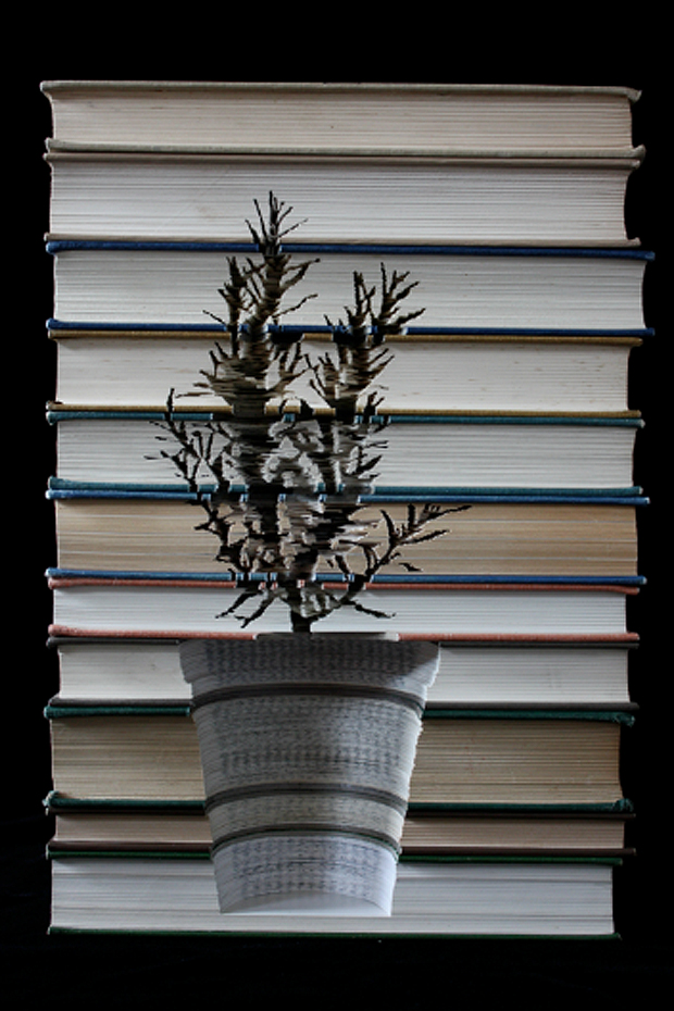 Carved Books by Kylie Stillman