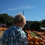 Pumpkin Patch 2015 - 100_0384.JPG