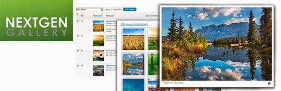 Nextgen Gallery - En Temel WordPress Eklentileri