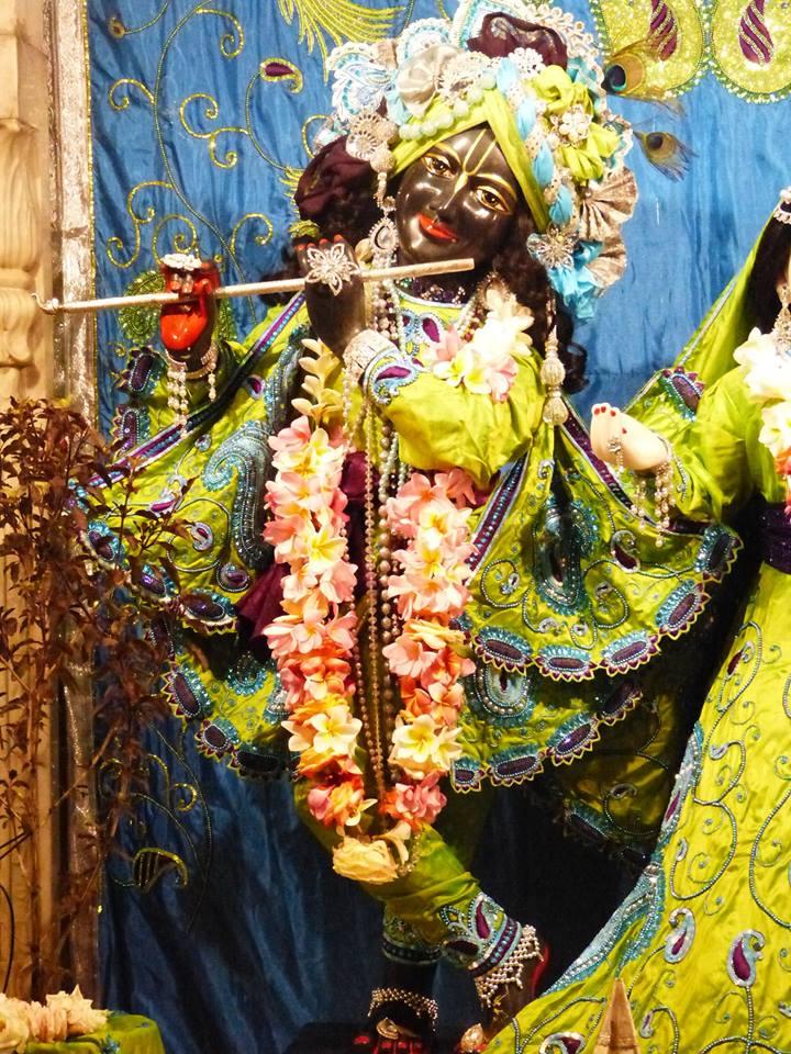ISKCON New Govardhan Deity Darshan 01 Mar 2016 (30)