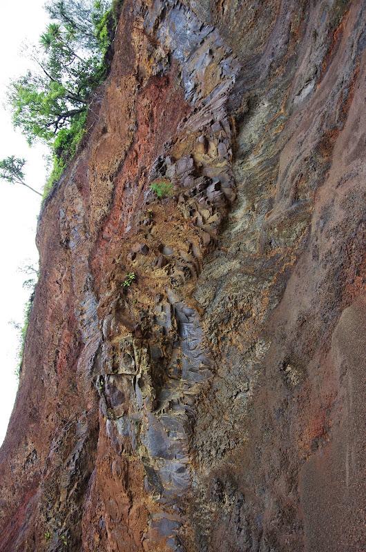 06-25-13 Annini Reef and Kauai North Shore - IMGP9306.JPG