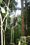 Vasilisa Jane in the Reserve Zone (Manu National Park, Peru)