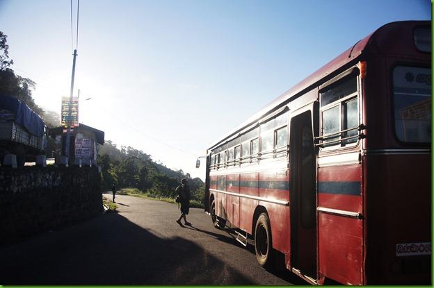 Sri langka115