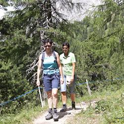 Wanderung Hanicker Schwaige 18.07.15-9032.jpg