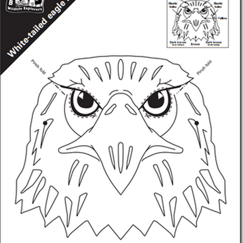 Máscara de águila blanca para colorear