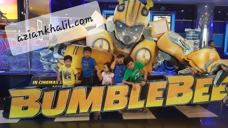 Bumblebee Time