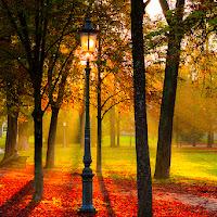 Parco Ducale Parma di