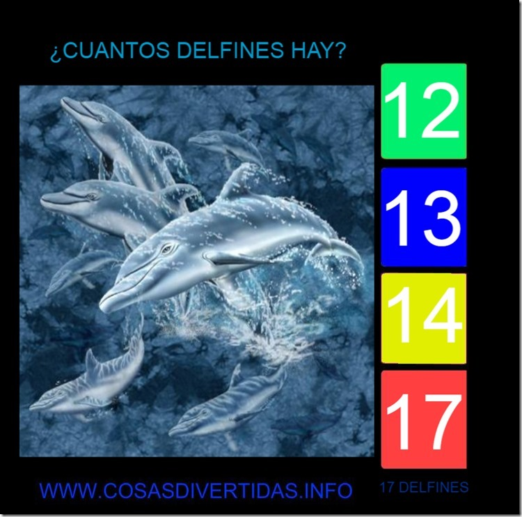 DELFINES 3