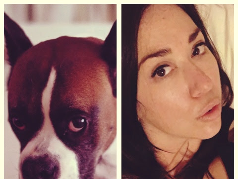 Ways in Which I Resemble My Dog (or Vice Versa)