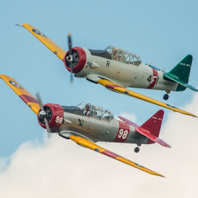 Texan Formation Flight by Werner Ennesser - Transportation Airplanes (  )