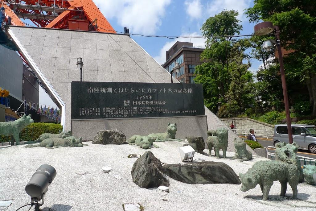 chiens tour de tokyo