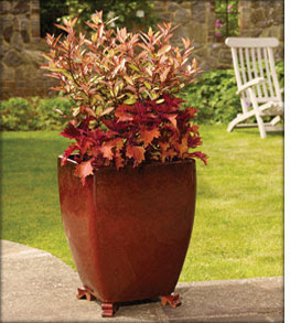 Apta Carnival Range Of Glazed Terracotta Pots