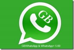 WhatsApp  5.60