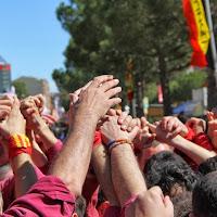 Actuació Mollersussa Sant Josep  23-03-14 - IMG_0480.JPG