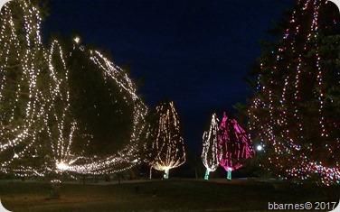 Lights at the lake 3